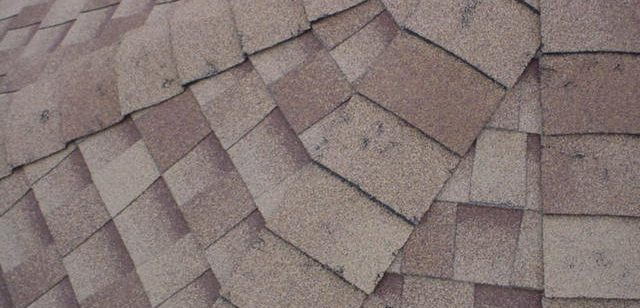 hail damage roof shingles