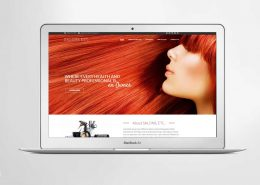 Salons ETC Website
