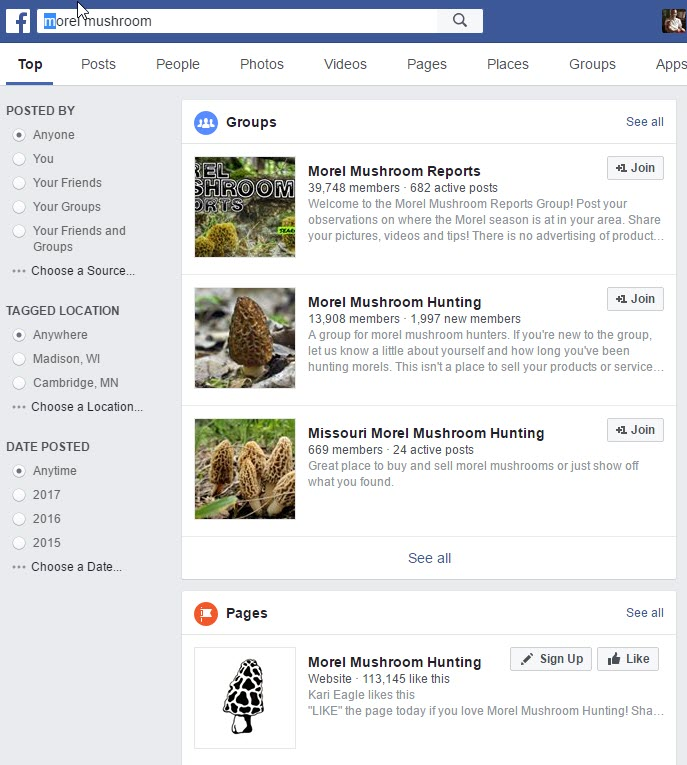 Why Is Facebook Search So Bad and Does It Matter? - Lion Tree Group